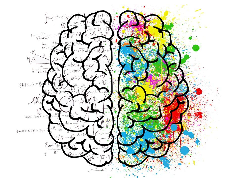 "Image result for growth mindset brain"""